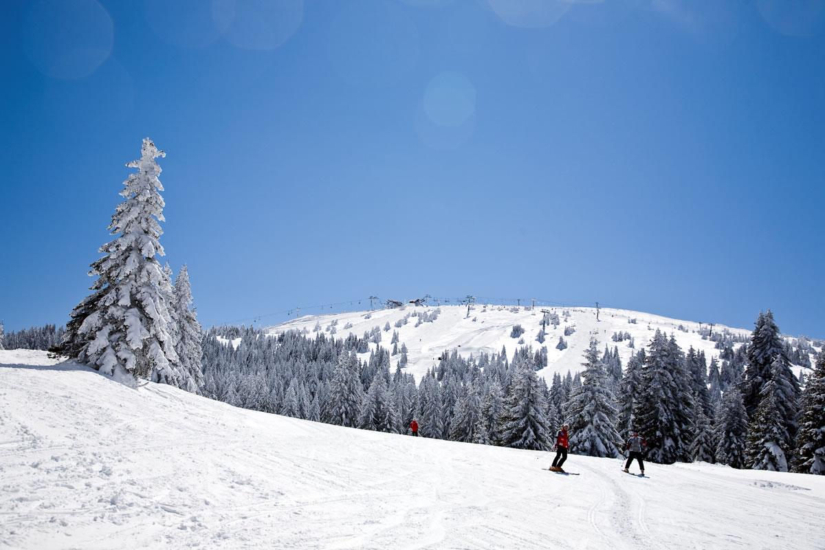 Skijanje na Kopaoniku - padina